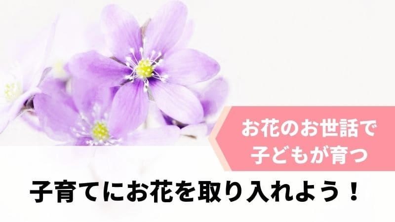 花のお世話で子どもの心を育てよう!